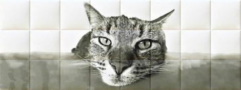 Nyomtatott műbőr falvédő - Cat